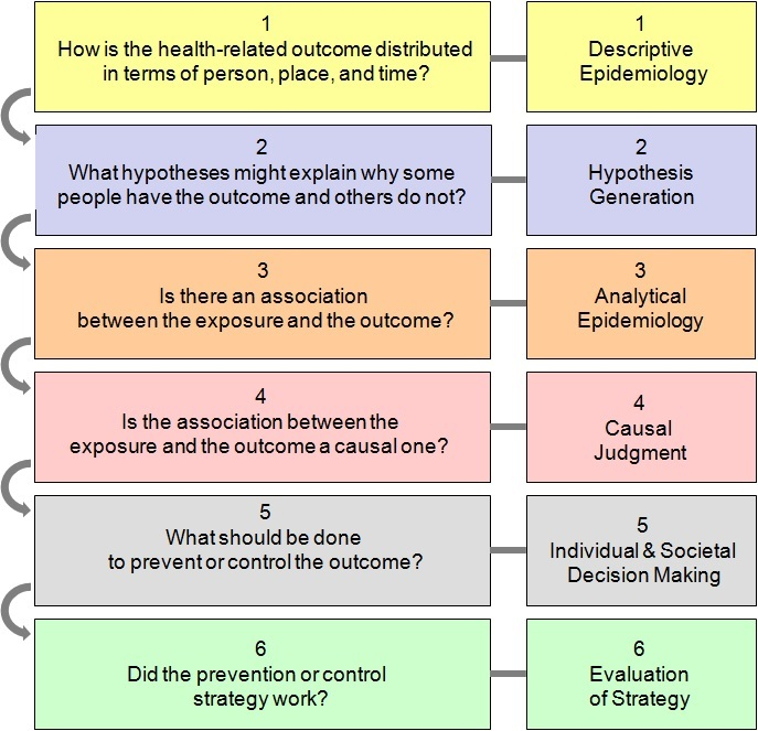 what is epidemiology Analytic epidemiology the second stage in an epidemiologic study, in which hypotheses generated in the descriptive phase are tested descriptive epidemiology the first stage in an epidemiologic study, in which a disease that has occurred is examined.